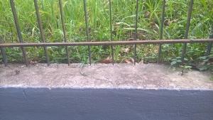Umidità controterra cemento osmotico